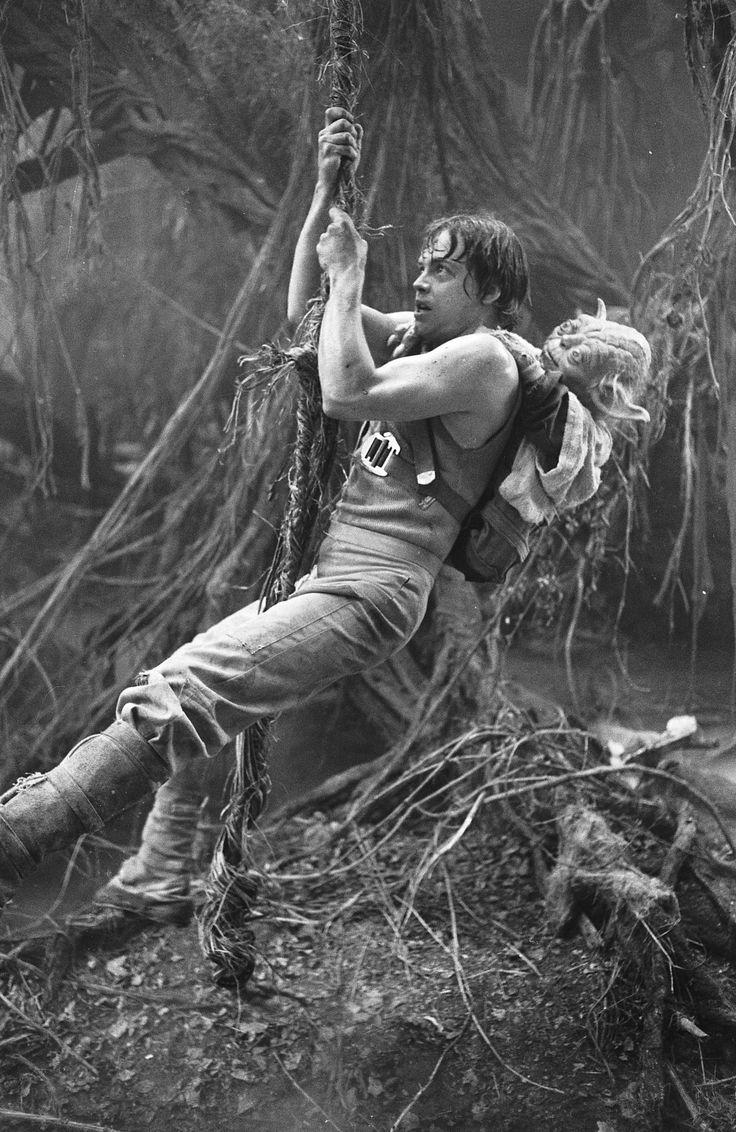 Jedi in training #starwars #skywalker #jedi #yoda