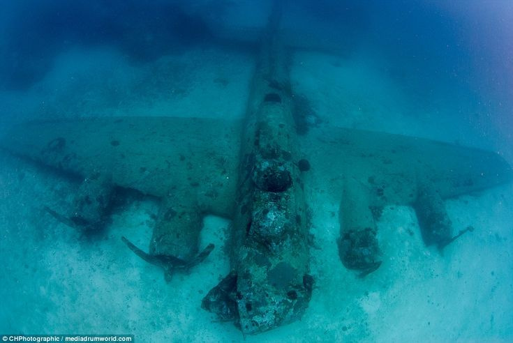 Canadian underwater photographer Christopher Hamilton, 34, embarked on a diving expedition to the Solomon Islands, near Papua New Guinea to photograph these underwater relics. ABoeing B-17 Flying Fortress is pictured above