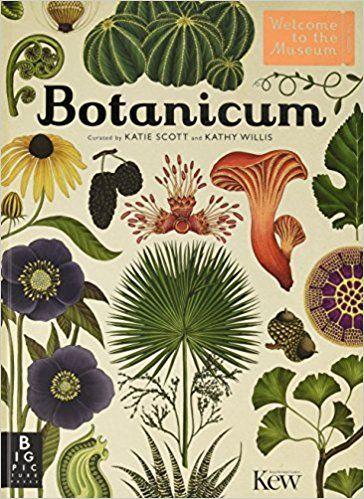 Botanicum (Welcome To The Museum): Amazon.co.uk: Kathy Willis, Katie Scott: 9781783703944: Books