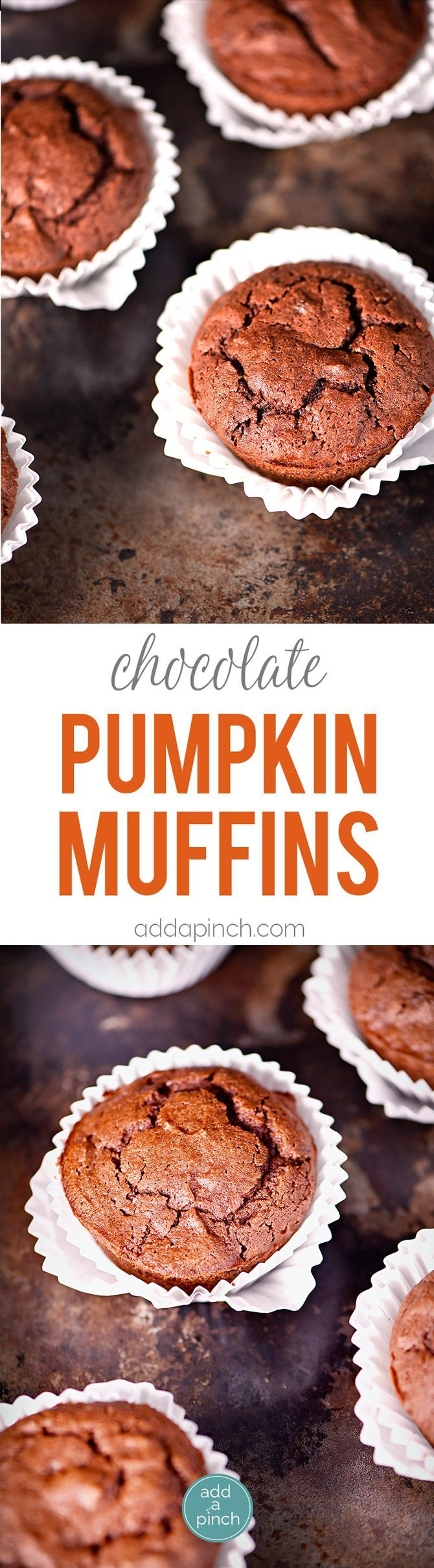 Pumpkin Chocolate Chocolate Chip Muffins make a special treat for breakfast, brunch or an afternoon snack! These are a definite fall favorite! // http://addapinch.com