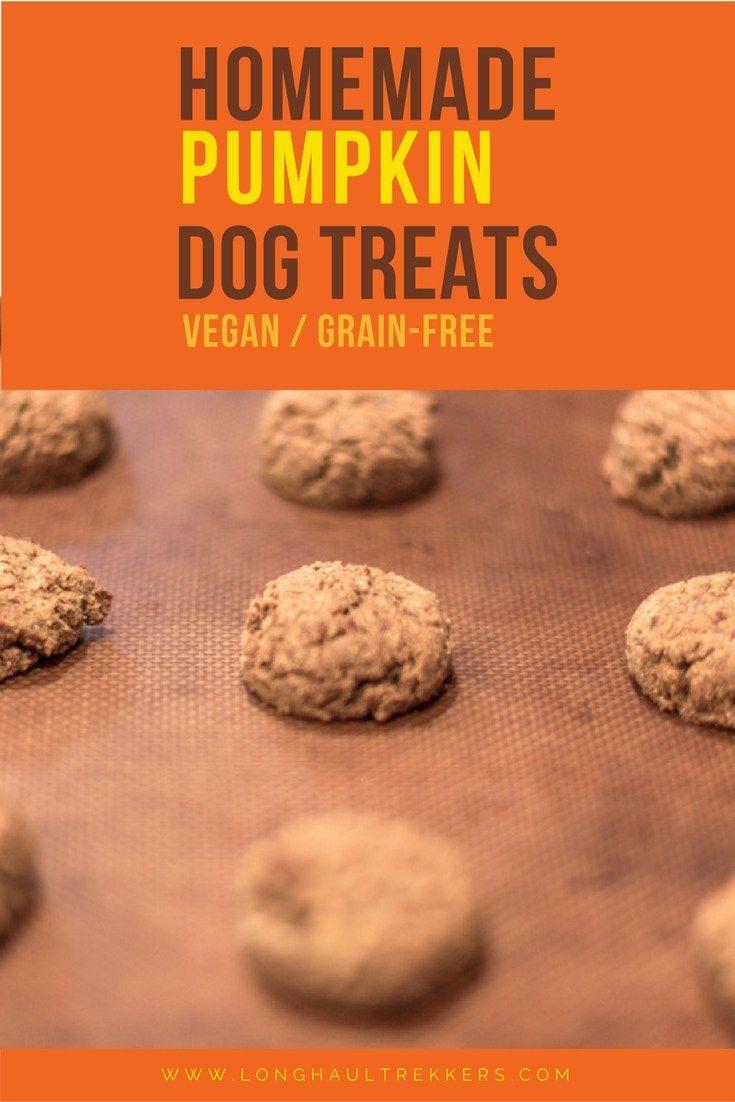 Homemade Pumpkin Dog Cookies Recipe Dog Treats Grain Free Dog
