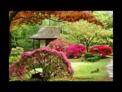 Más de 25 ideas increíbles sobre Jardines japoneses en ... - photo#19