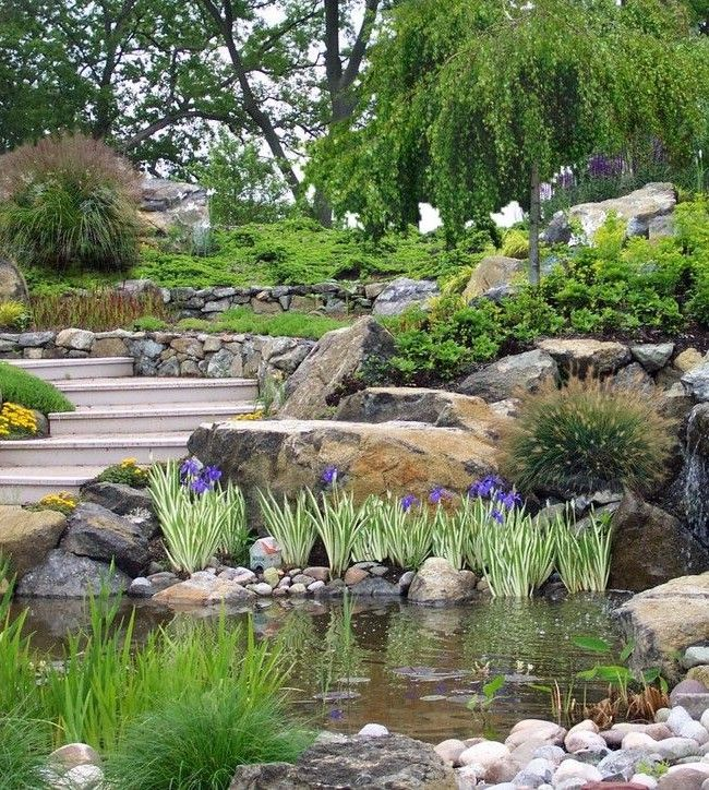 Spectacular alpine garden with a small pond