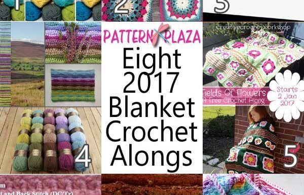Best 17 CAL 2017 images on Pinterest | Häkeldecken, Crochet afghans ...