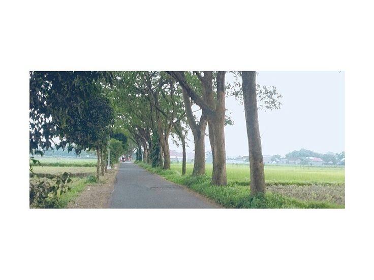 Indonesia jawa timur life daily