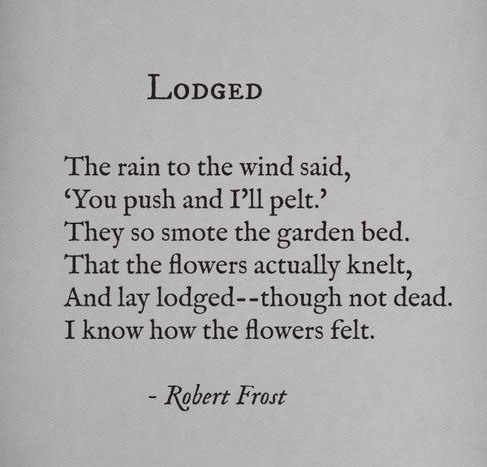 robert frost famous poems pdf