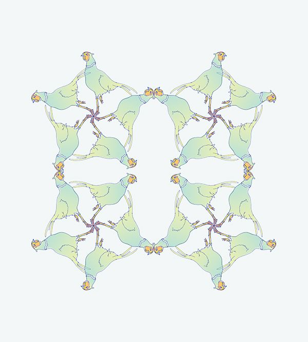 Patterns - by Federica Fragapane on Behance
