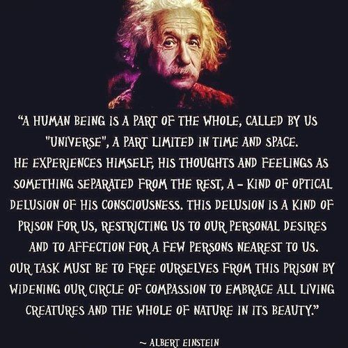 """""""A human being is part of a whole, called by us the 'Universe' —a part limited in time and space. He experiences himself, his thoughts, and feelings, as something separated from the rest—a kind of optical delusion of his consciousness. This delusion is a kind of prison for us...Our task must be to free ourselves from this prison by widening our circles of compassion to embrace all living creatures and the whole of nature in its beauty."""" ~ Albert Einstein #quote"""