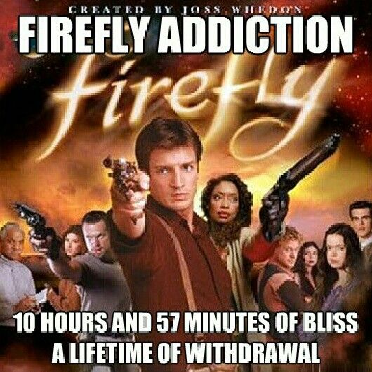 "This is the truest thing ever! Firefly, the brilliant Space-Western TV show of Joss Whedon, got cancelled too soon by Fox Network's fuck-ups, and we still pine for Nathan Fillion, Adam Baldwin, Jewel Staite and all the others onboard the Serenity. Really funny and inventive show. Sure, the movie ""Serenity"" gave us some comfort, but not enough! I still hope Nathan gets his wish of a resurrected ""Firefly"". Nathan - You're our only hope."