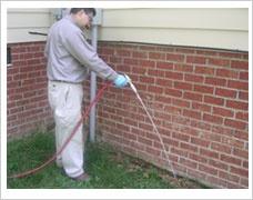 Houston Termite ControlControl Options, Houston Termites, Termites Control, Ants Control, Termites Work
