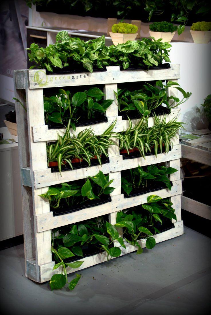 Eko rozwiązania w roślinnych ścianach - Wroclove 2013