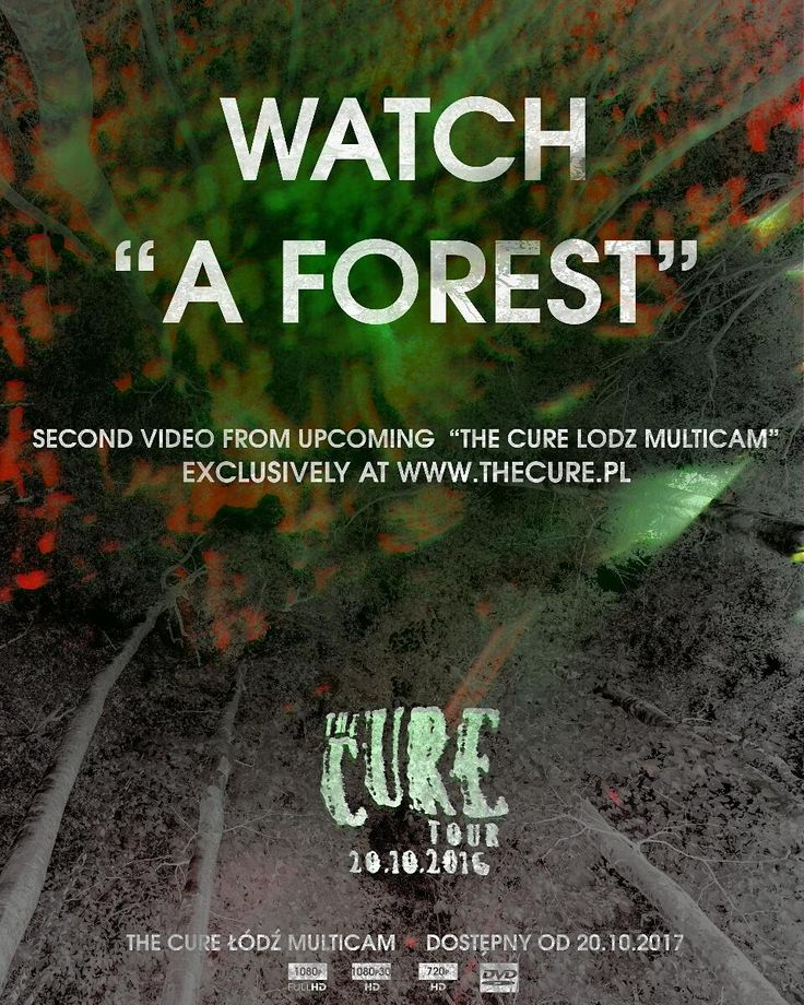 "Watch ""A Forest"" from ""The Cure Lodz Multicam"" at www.thecure.pl #TheCure #Lodz #Multicam #free #fan #film #project #thecuretour2016 #RobertSmith #rock #pop #indie #goth #alternative #postpunk #80s #90s #music #instamusic #łódź #atlasarena #concert #koncert #live #download @thecure @martinmarszalek"