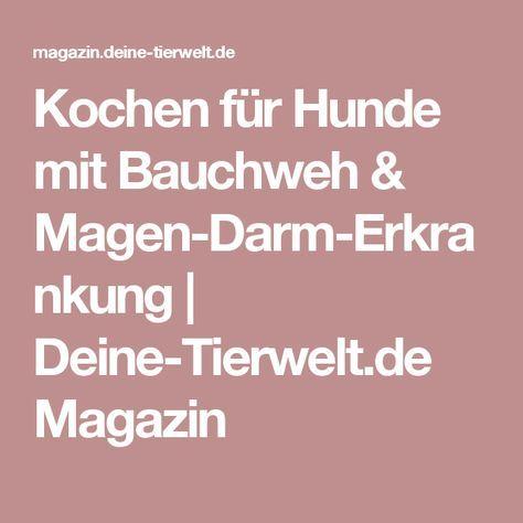 Kochen für Hunde mit Bauchweh & Magen-Darm-Erkrankung | Deine-Tierwelt.de Magazin