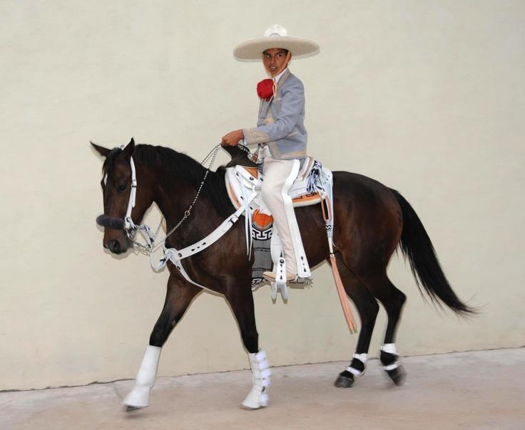 puro charro | Estilo mexicano | Pinterest