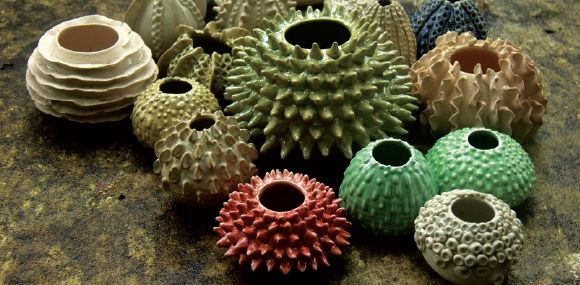 A collection of ceramics inspired by the sea and its corals. | Courtesy Bhagyashree Patwardhan