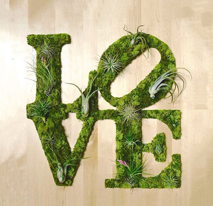 Unique Graffiti Moss Art to Beautify Your Wall | DesignRulz