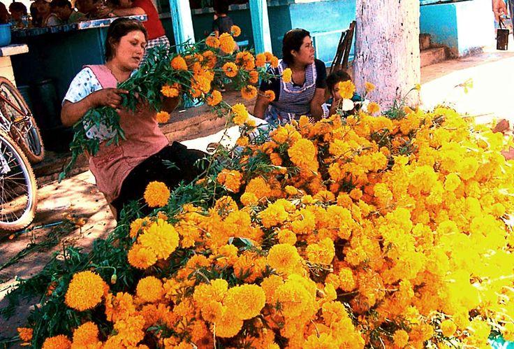 Women selling cempasuchil flowers at Zaachila Friday Market
