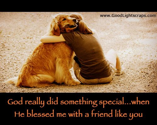Quotes About Dog Friendship Delectable Best 25 Dog Best Friend Quotes Ideas On Pinterest  Animal Love