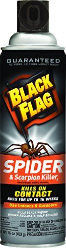 Black Flag Spider And Scorpion Killer Aerosol Spray, 16-Ounce, 12-Pack, 2015 Amazon Top Rated Sprayers #Lawn&Patio