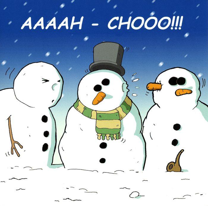 Aaaah - Chooo | Christmas Cards | Pinterest | Christmas humor, Funny ...