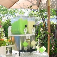 Margarita machine 2 for $170, a must-have for the wedding!