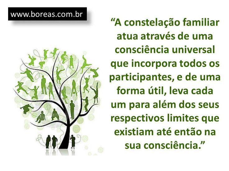 Atuação da Constelação Familiar...