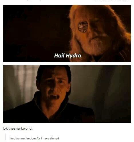Loki ~ Odin ~ Hail Hydra I started laughing then I saw lokis face and I started crying