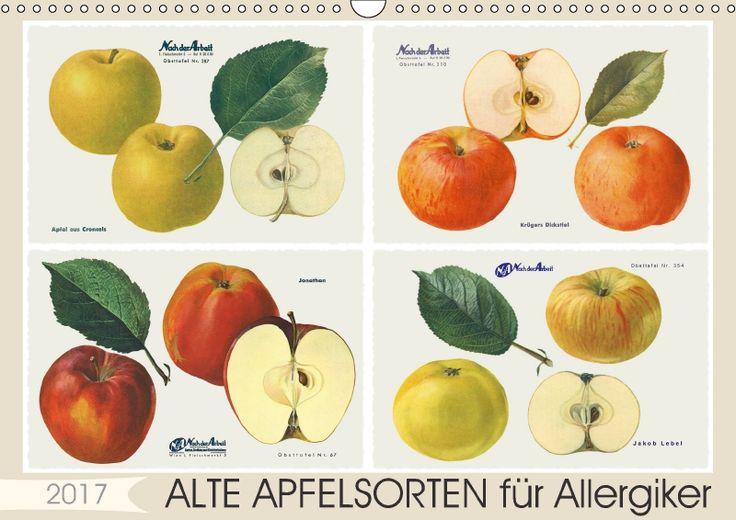 50 best images about alte apfelsorten on pinterest. Black Bedroom Furniture Sets. Home Design Ideas