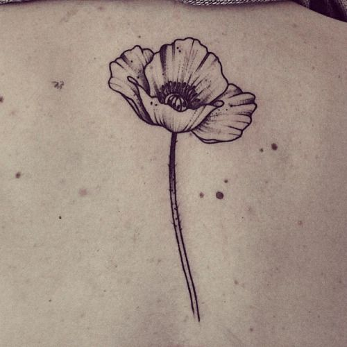 Poppy Flower Tattoo Black And White | www.imgkid.com - The ...