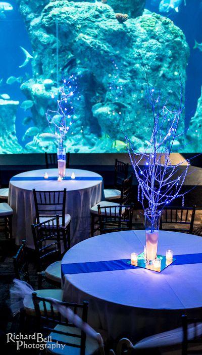 south carolina aquarium wedding reception