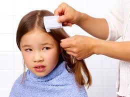 Head lice are very common, particularly in children ages 3 years to 12 years. Find here Natural Head Lice Treatment.