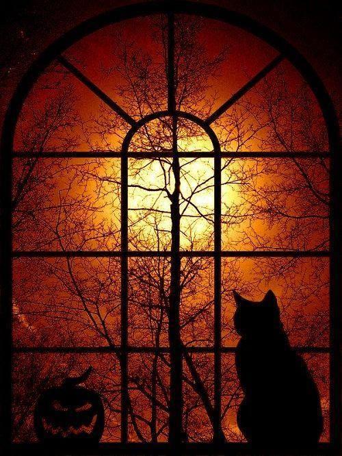 Halloween light
