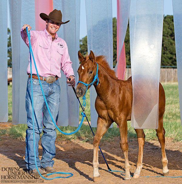 Downunder Horsemanship | Training Tip: Mental & Physical Stimulation