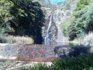 Waterfall Gully 300x225 Hiking in Adelaide   5 top Walking Trails