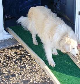 Low cost dog ramp plans for easy-to-build, portable, folding wooden ramps. Designed by an engineer.