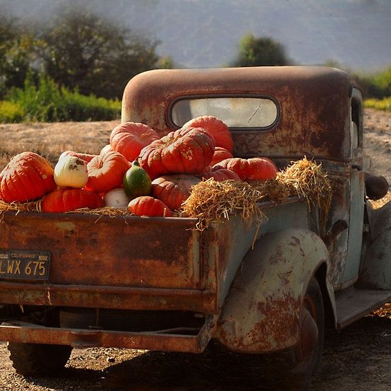 There's just something about old trucks and pumpkins :)