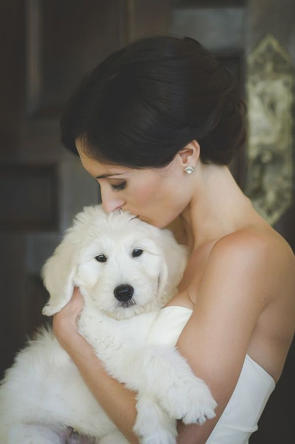 An Adorably Sweet Puppy & One Happy Couple at This Delightful Powell Crosley Estate Wedding