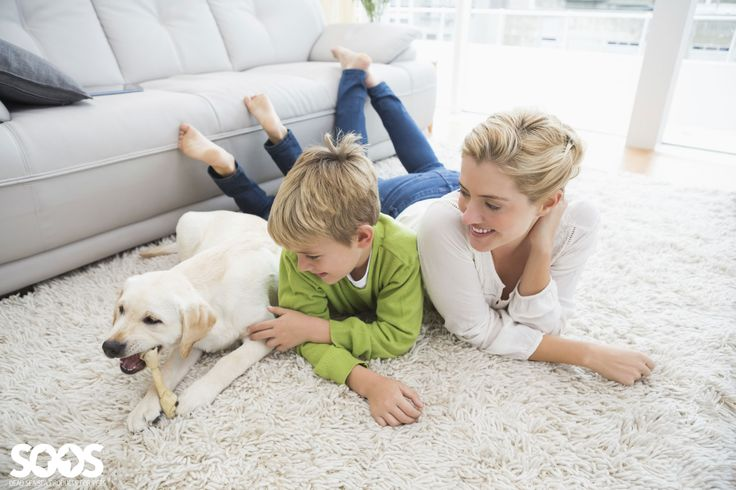 Mom and son playing with white lab puppy eating a rawhide