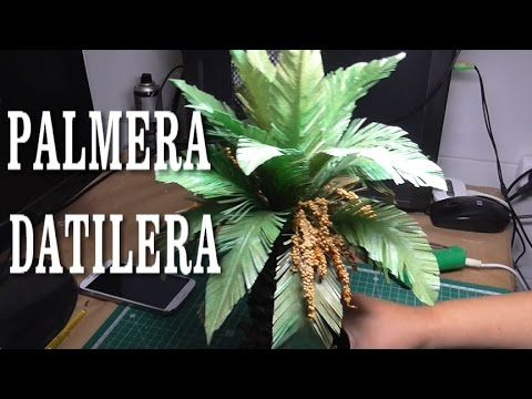 DIY PALMERA DATILERA DE TRONCO GORDO - DATE PALM, THICK TRUNK - YouTube