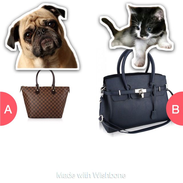 Which bag would you go for are you a cat or a dog  Click here to vote @ http://getwishboneapp.com/share/14037498