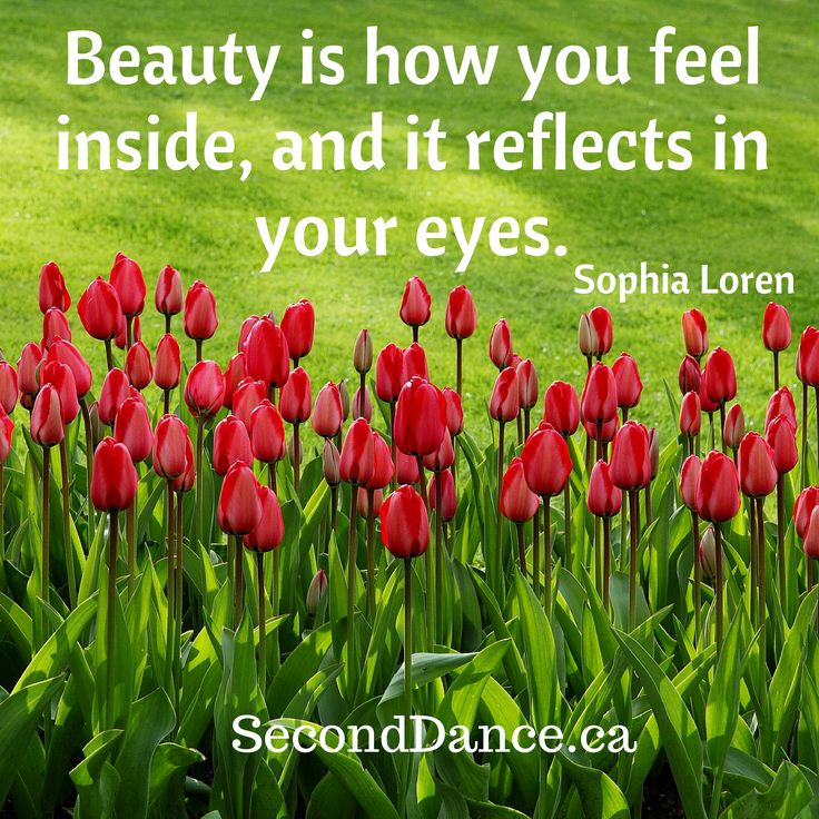 Beauty is how you feel inside, and it reflects in your eyes. – Sophia Loren   #bride #bridal #wedding #weddingdress #bridalgown #weddinggown #GTA #Niagara #Toronto #Hamilton #Buffalo #NewYork #WesternNewYork #Kitchener #Waterloo #engagement #fiancee #proposal #weddingtrends #DIY #budget