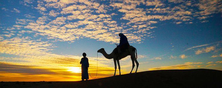 Kameel rijden in de Sahara woestijn van #Marokko. Slapen bij de Bedoeinen onder een prachtige sterrenhemel. http://www.pluq.nl/nl/huwelijksreizen/marokko