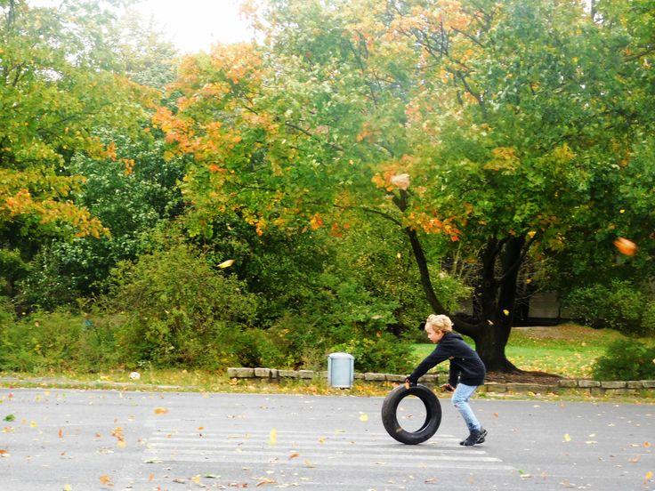 HANNOVER LIST Herbsttag Autumn hanover germany
