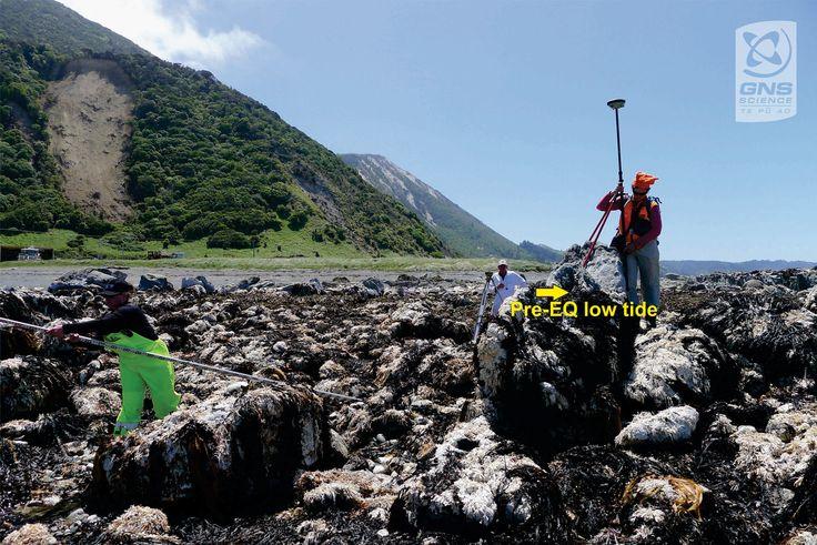 Okiwi_Bay_surveying.jpg