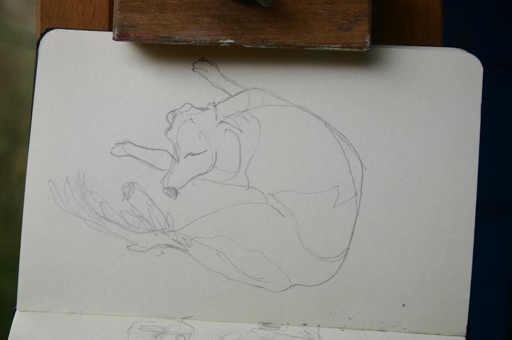 Sketchbook Tigger