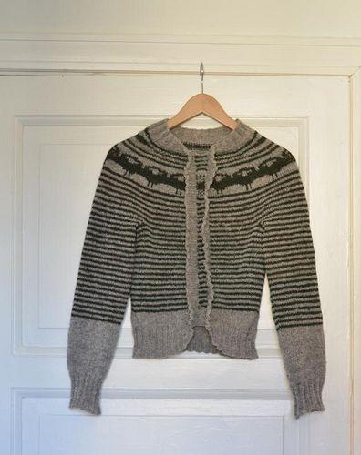 Sinnasau-genseren er ferdig | da osloann