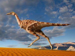 Encuentran un dinosaurio con un solo dedo: http://www.muyinteresante.es/encuentran-el-primer-dinosaurio-con-un-solo-dedo