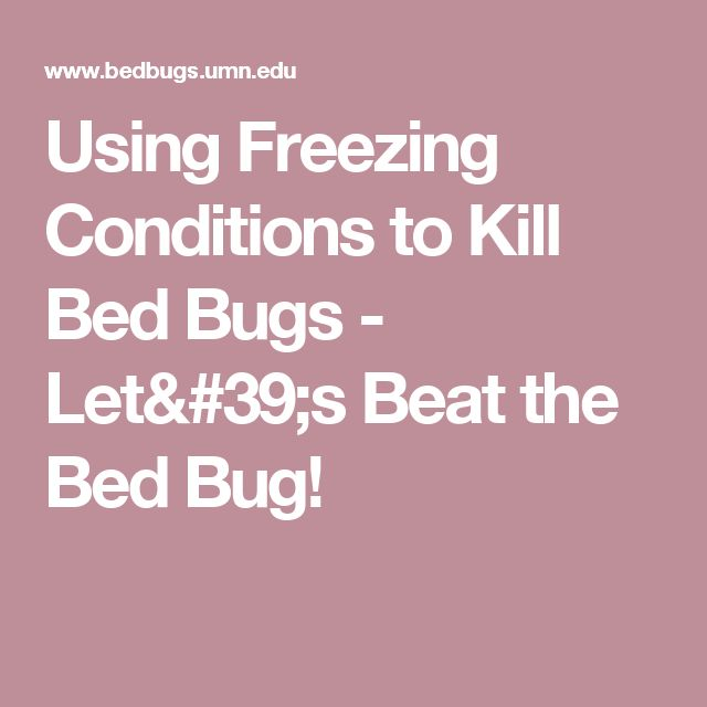Using Freezing Conditions to Kill Bed Bugs - Let's Beat the Bed Bug!