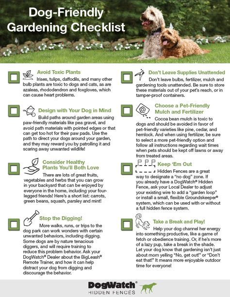 Spring is here at last! Before you start work on your latest gardening project, check out our Dog-Friendly Gardening Checklist!
