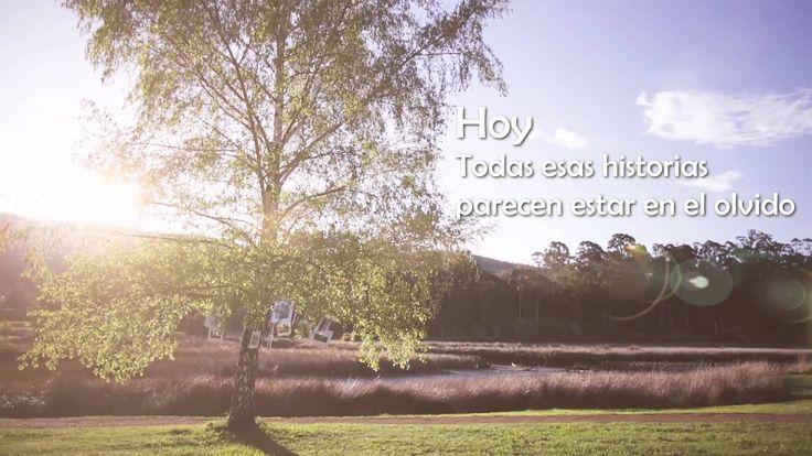 Video Tus reQRdos